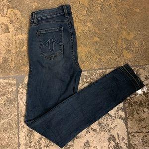 Anthropologie Jeans - Anthro Level 99 Liza Midrise Skinny Jean in Meadow